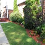 New clean-up and mulch addition to front garden 2014